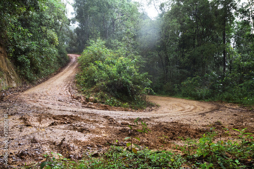 Fotografía  Dirt road or mud road and rain forest