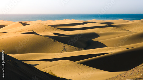 Photo  Sand Dunes by a Sea