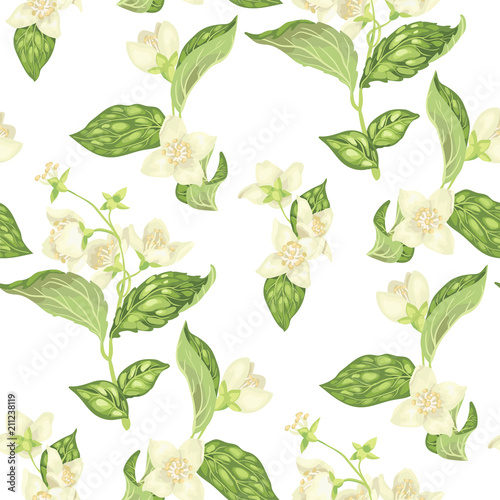 Seamless pattern with jasmine flowers in vector Wallpaper Mural