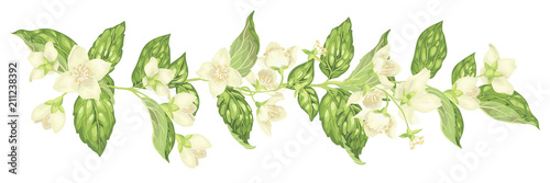 Stampa su Tela Horizontal decor elements with jasmine flowers bloom branches in realistic graph