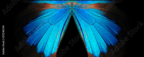 Fototapeta  Blue abstract pattern
