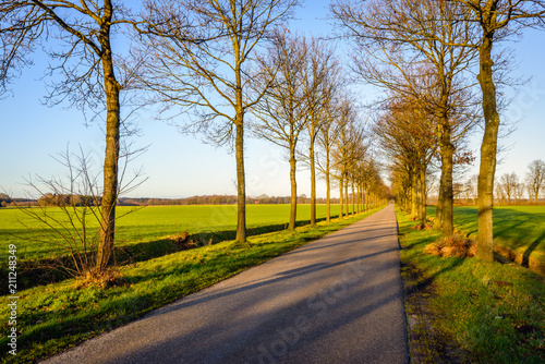 Fotografia  Seemingly endless  country road in the Netherlands