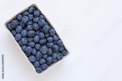 Blaubeeren / Heidelbeeren Fototapeta