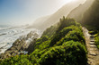 canvas print picture - Tsitsikamma national park Garden Route, Indian ocean landscape, near Plettenberg bay, South Africa, Eastern Cape. South african landscape