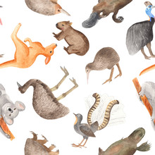 Seamless Pattern Of Australian Animals. Hand-drawn Watercolor On A White Background. Kangaroo, Koala, Cassowary, Kiwi, Wombat, Echidna, Lira Bird, Emu.