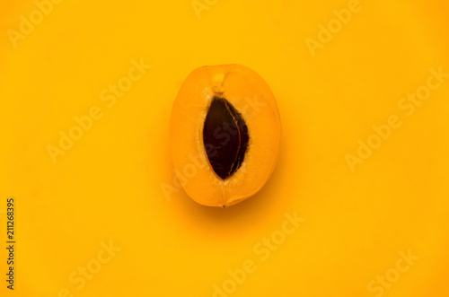 Foto One half of an apricot with a stone
