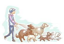 Dog Walker Man Illustration