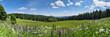 canvas print picture - Thüringer Wald im Sommer mit Bergwiese