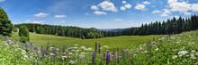 Thüringer Wald Im Sommer Mit ...