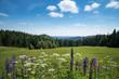 Landschaft an der Schmücke / Thüringer Wald