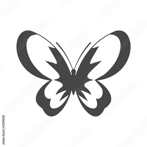 Fototapeta Butterfly isolated on white background