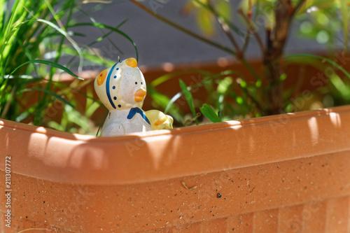 Photo  Decorative garden plastic duck in flowerpot, sunny day, postcard mock-up
