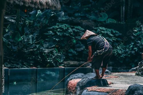 Fotografie, Obraz  Village in Bali