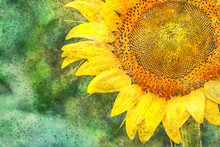 Watercolor Close Up Of A Huge Sunflower With Copy Space