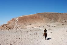 Cavalier Sur Un Sentier Aride