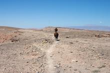 Cavalier Dans L'Atacama
