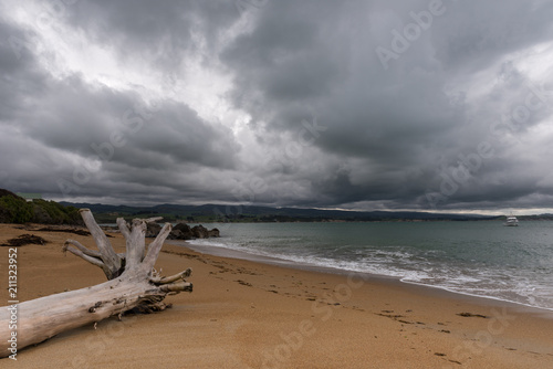 Cuadros en Lienzo  Driftwood log on Moeraki beach under a stormy, threatening sky.