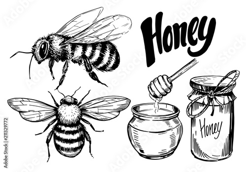 Sketch of honey elements Wallpaper Mural