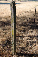 Old Wood Fence Post