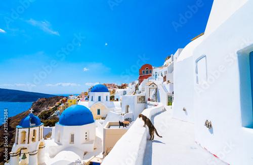 Foto auf AluDibond Santorini Oia town on Santorini island, Greece. Traditional and famous houses and churches with blue domes over the Caldera, Aegean sea