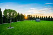 Garden With Perfect Cut Grass And Sun Flare At Sunset