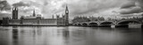Fototapeta Londyn - Waterfront view of Palace of Westminster in black and white
