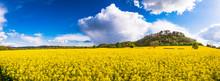 Beautiful Panorama Of Field Of...