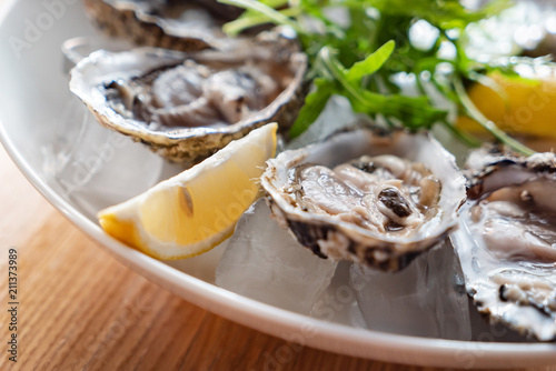 oyster on the ice Wallpaper Mural