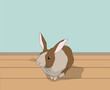 rabbit sitting in a room, vector