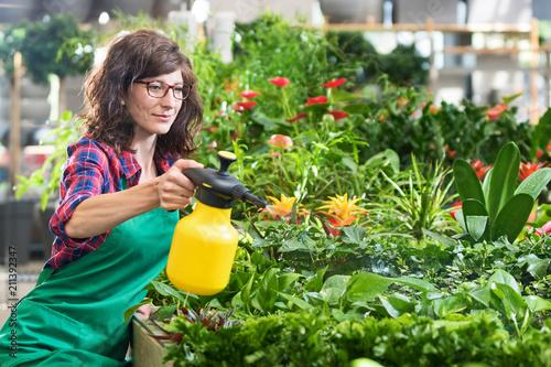 Fotografía  Floristin im Laden besprüht die Zierpflanzen mit Wasser aus einer Pumpflasche