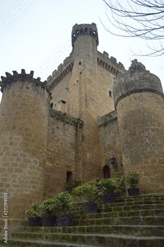 Good Shot Of An Endless Battlements Sajazarra Castle Spectacularly Preserved Side Shot. Architecture, Art, History, Travel. December 27, 2015. Sajazarra, La Rioja, Spain.