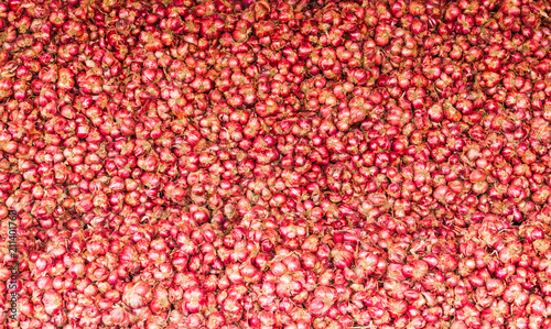 Deurstickers koffiebar close up of Many heads of red onion on market stand