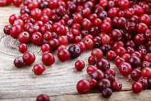 Cranberry As A Background