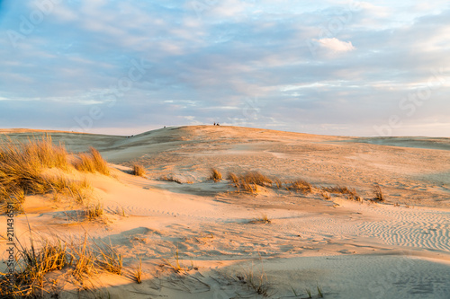 Fotomural Sunset over the majestic dunes at Jockey's Ridge State Park