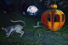 Orange Pumpkin Carriage With A...