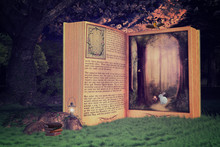 Magical Open Storybook In The ...
