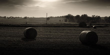 Round Bales At Sunset In The Country