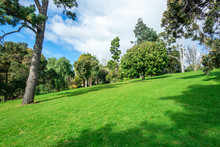 Beautiful Green Lawn And Trees In Park With Blue Sky And Clouds As Background.  Copy Space For Text. Footscray Park, VIC Australia.