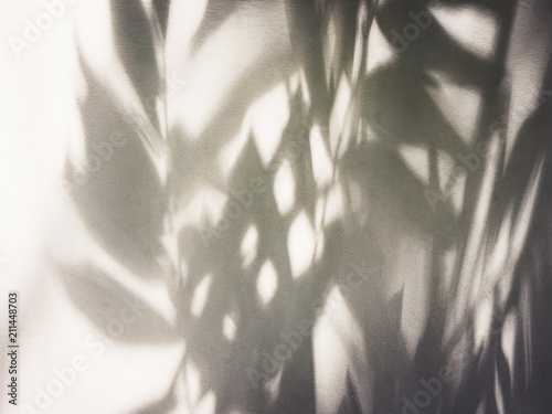 obraz lub plakat Tree leaves shadow on wall Nature Abstract background
