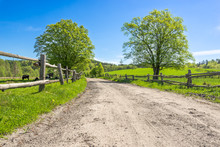 Countryside Scene, Pasture In Country Scenery And Dirt Road Through Farm, Landscape
