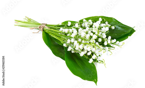 Foto lilly of the valley isolated on white