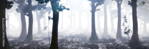 Poster Gris foggy forest at sunrise, peaceful landscape background with trees