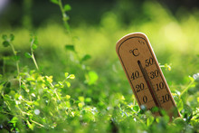 Eco Image Of  Thermometer , Ab...
