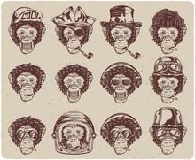 Set Of Isolated Monochrome Monkey Faces
