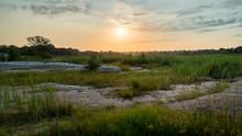 Sonnenuntergang Im Busch In Südafrika
