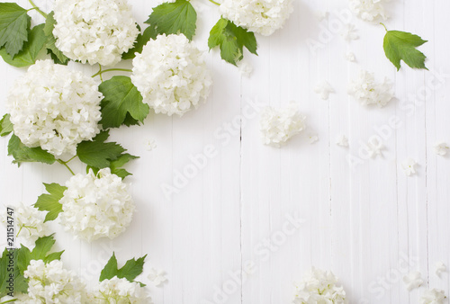 Poster Fleur decorative viburnum on wooden background