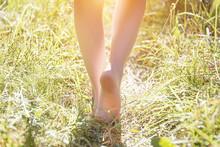 Bare Feet On Green Grass