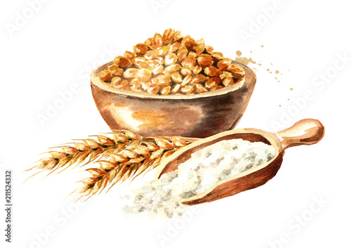Fototapeta Bowl of grain, ears of wheat and wooden scoop with flour. Watercolor hand drawn illustration, isolated on white background obraz