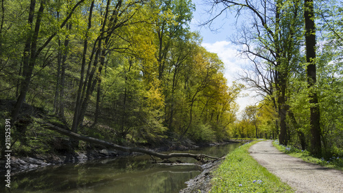 Fotografía A gravel bicycle path runs through the forest beside the historic Canal Towpath