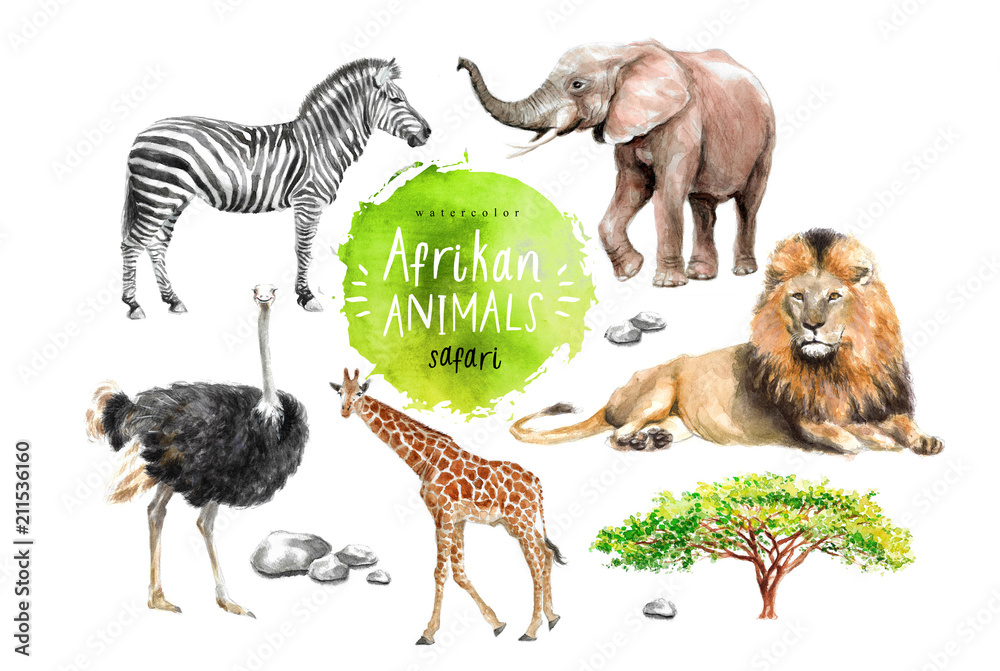 Fotografía  watercolor illustration of wildlife in Africa: zebra, lion, ostrich, elephant, g